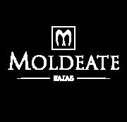 Moldeate Logo Oficial